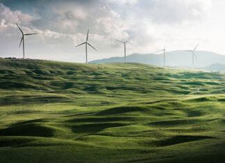 Zielona energia w firmie